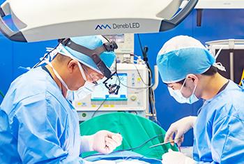 たぐち動物病院グループ(二次診療)|外科、整形外科、腫瘍科、眼科、皮膚科、放射線治療科、人工股関節外来/人工股関節全置換術(THA)|夜間救急診療対応20:00〜22:00(要事前連絡)